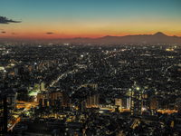 Sunset over city, Tokyo, Japan