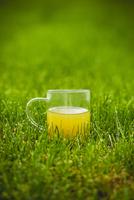 Glass of green tea on lawn 11098036652| 写真素材・ストックフォト・画像・イラスト素材|アマナイメージズ