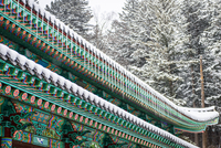 Icicles hanging from roof of wooden temple, Pyeongchang, South Korea 11098036717| 写真素材・ストックフォト・画像・イラスト素材|アマナイメージズ