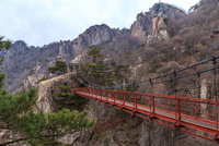 Geumgang Gureumdari Bridge, Daedunsan Provincial Park, South Korea