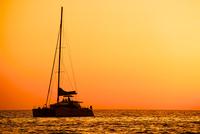 Catamaran sailing on Tyrrhenian Sea at sunset, Acciaroli, Campania, Italy