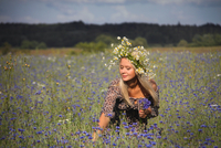 Young woman in chamomile (matricaria chamomilla) wreath picking cornflowers (centaurea cyanus)