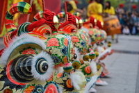Lion dance at Chinese festival, China