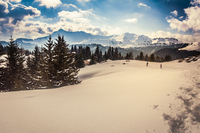 Chablais Alps, Les Gets, Haute-Savoie, Rhone-Alpes, France