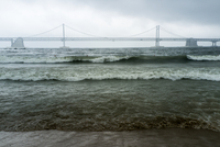 View of suspension bridge from beach, Gwangalli Beach, Busan, South Korea