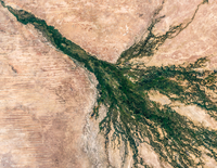 Satellite image of Okavango Delta, Botswana, Africa
