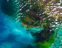 Satellite image of everglades national park, Florida, USA 11098042303| 写真素材・ストックフォト・画像・イラスト素材|アマナイメージズ