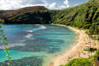Sandy coastline and green cliffs, Hanauma Bay, Oahu, Hawaii, USA