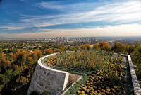 Cactuses on top of Getty Museum with city in background, Brentwood, Los Angeles, California, USA 11098042550| 写真素材・ストックフォト・画像・イラスト素材|アマナイメージズ