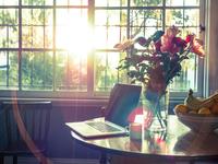 Home interior with sun shining through window