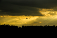 Silhouette of flying hot air balloon above forest