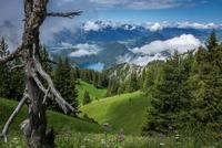 Scenic landscape, Allgau Alps, Germany
