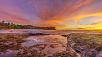Golden hour on coast with cliff in background, Sydney, Australia