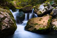 Rocks by waterfall in forest
