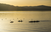 Silhouettes of people canoeing on lake at sunset, California, USA