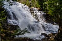 Falls in forest, Revelstoke, British Columbia, Canada