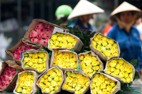 View of flower market, Vietnam