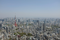 Elevated view of cityscape with Tokyo Tower, Tokyo, Japan