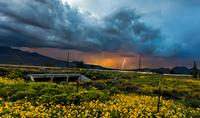 Summer storm in rural landscape, Arizona, USA