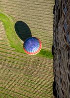 Colorful hot air balloon seen from another balloon, Napa, California, USA
