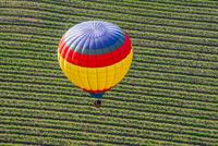 Colorful hot air balloon over field, Napa, California, USA