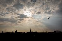 Sunbeams over city silhouette, Copenhagen, Denmark