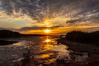 Sunset at wetland, Ontario, Canada