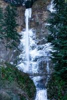 View of Multnomah Falls, Multnomah County, Oregon, USA