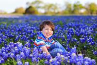 Boy (4-5) among blooming flowers, Texas, USA