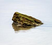 Single rock in water