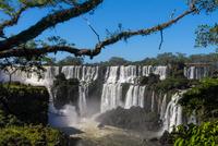View of Iguazu Falls, Iguazu Falls, Brazil and Argentina