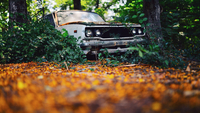 Rusty abandoned car in forest, Thailand