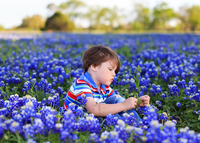 Boy (6-7) sitting among flowers, Texas, USA