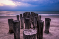 Wooden poles in sea, Gulf of Mexico, Florida, USA