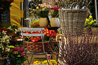 Baskets and flower pots in flower shop