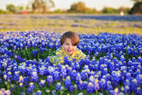 Boy (8-9) sitting among bluebonnet flower field, Texas, USA
