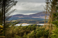 View of Clatteringshaws Loch, Dumfries and Galloway, Scotland, UK