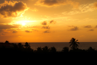 Sunset over silhouette treeline overlooking sea, Cuba