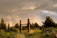 Rainbow over meadow on cloudy day, Sisters, Oregon, USA