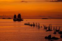 Silhouette sailboats at sunset, Koh Samui, Surat Thani, Thailand