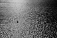 Sailboat on rippled sea, Italy