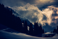 Clouds over pine forest, Oberstdorf, Germany