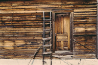 Ladder leaning on wooden wall with doors