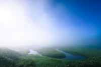 Fog and clear sky over green wetlands, Uryu, Hokkaido, Japan