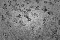 Close up view of snowflakes 11098050187| 写真素材・ストックフォト・画像・イラスト素材|アマナイメージズ