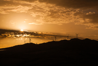 Silhouette of wind turbines on hill, Sicily, Italy