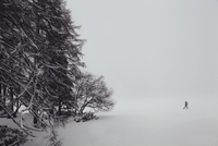 Landscape in snow