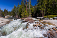 Merced River rapids near conifer forest in Yosemite National Park, California, USA