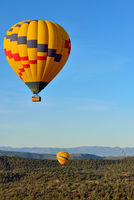 Two hot air balloons over forest, Sedona, Arizona, USA