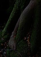 Double exposure leg over tree roots